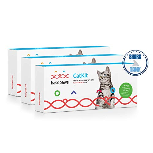 Basepaws | Cat DNA Test | Breed & Health Reports | Wildcat Index | 39 Health Markers | 17 Genetic Diseases | As Seen On Shark Tank