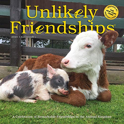 Unlikely Friendships Wall Calendar