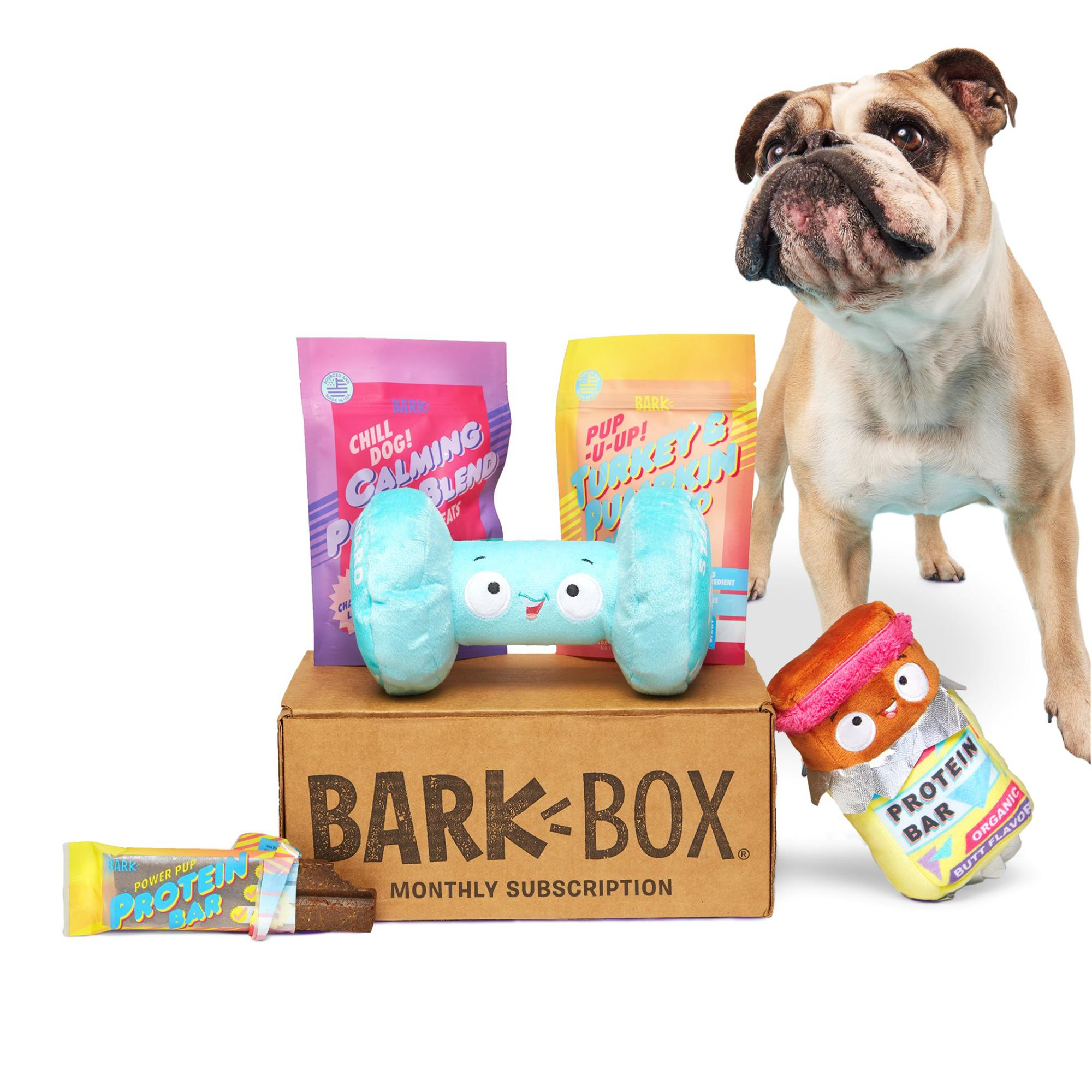 image 10 Holiday Gifts Your Dogs Are Absolutely Begging You to Get Them