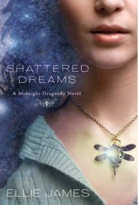 51W8Sc2jBzL. SS500 Book Review: Shattered Dreams