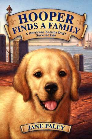 Hooper cover Book Review: Hooper Finds a Family
