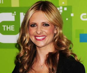 smg ringer cw New Fall 2011 TV Shows: What Are You Looking Forward To?