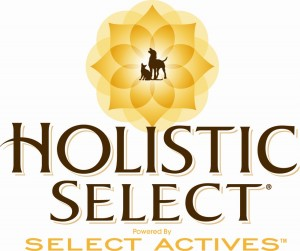 8 Spotlight: Holistic Select