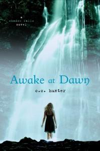 Book Review: Awake at Dawn