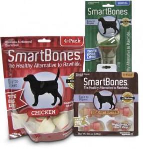 Spotlight: Smart Bones
