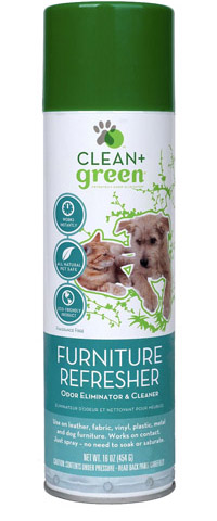 Spotlight: Clean+Green Furniture Refresher