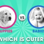 Puppies Versus Babies: Who's The Cutest of Them All?