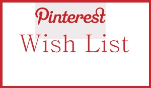 Pin My Pinterest Wish List: Options They Need Now