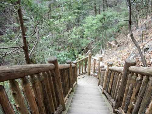 100 2711 Bushkill Falls (The Niagara Of Pennsylvania): Fun Things To Do in The Poconos