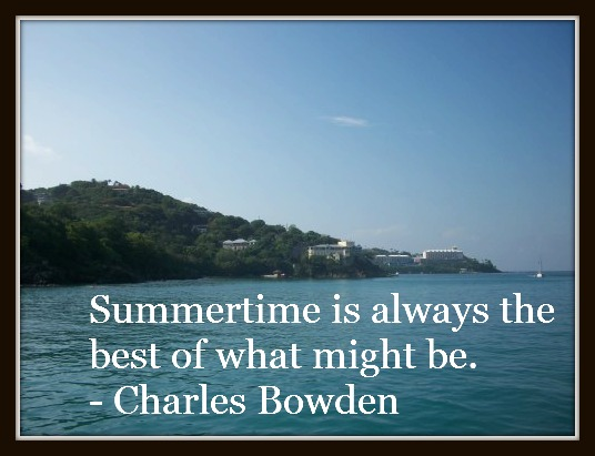 100 0370 Lovely Quotes About Summer