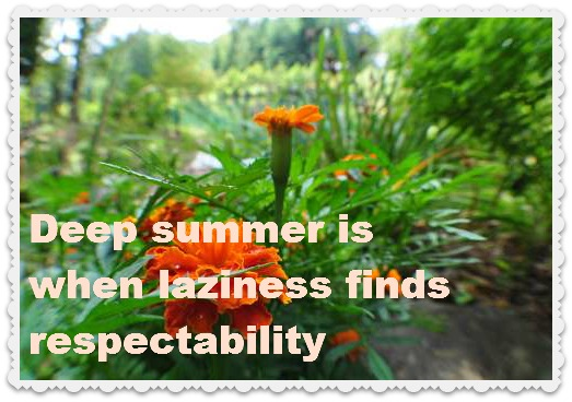 Azalea Path 149 Lovely Quotes About Summer