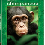 A Peek at DisneyNature's Chimpanzee  Blu-ray™ Combo Pack