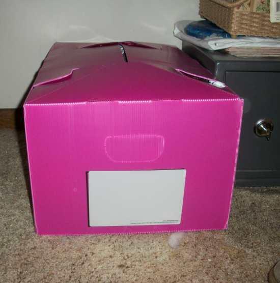 Packaways Reusable Plastic Multi Purpose Storage Box Review