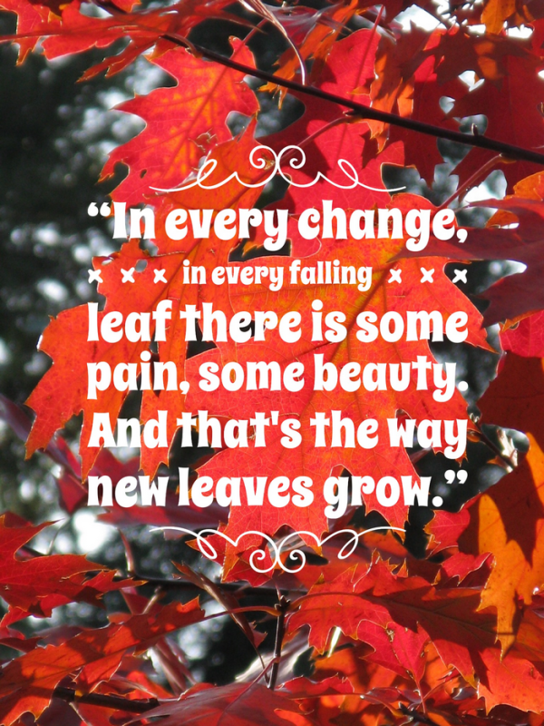 9 welcome autumn quotes about my favorite season