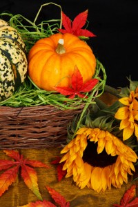 pumpkin and sunflower 11287576335maLp Guest Post: How to Make Your Thanksgiving Table Stand Out