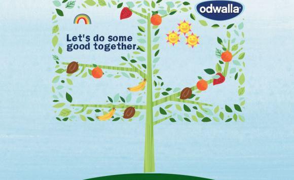 Odwalla Tree