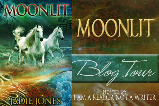 Moonlit Tour Banner