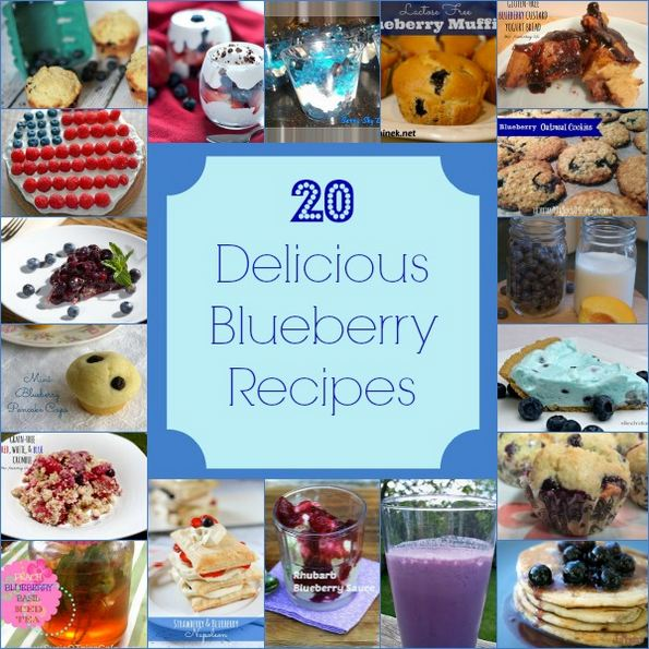 20 Delicious Blueberry Recipes