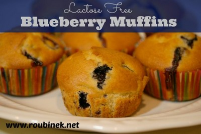 Blueberry Recipes: Lactose-Free Blueberry Muffin