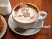 Prue Cappuccino