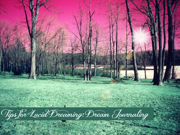 Dream Journal for Lucid Dreaming