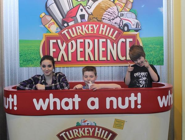 Turkey Hill What a Nut