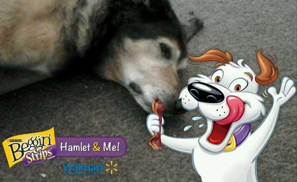 Maia and Hamlet