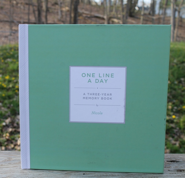 One Line a Day Journal for Busy Moms