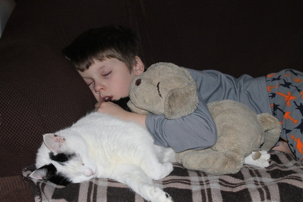 Jacob using the cat as a pillow