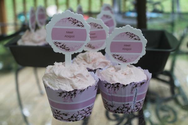 BigDot Meet Abigail Cupcakes 1