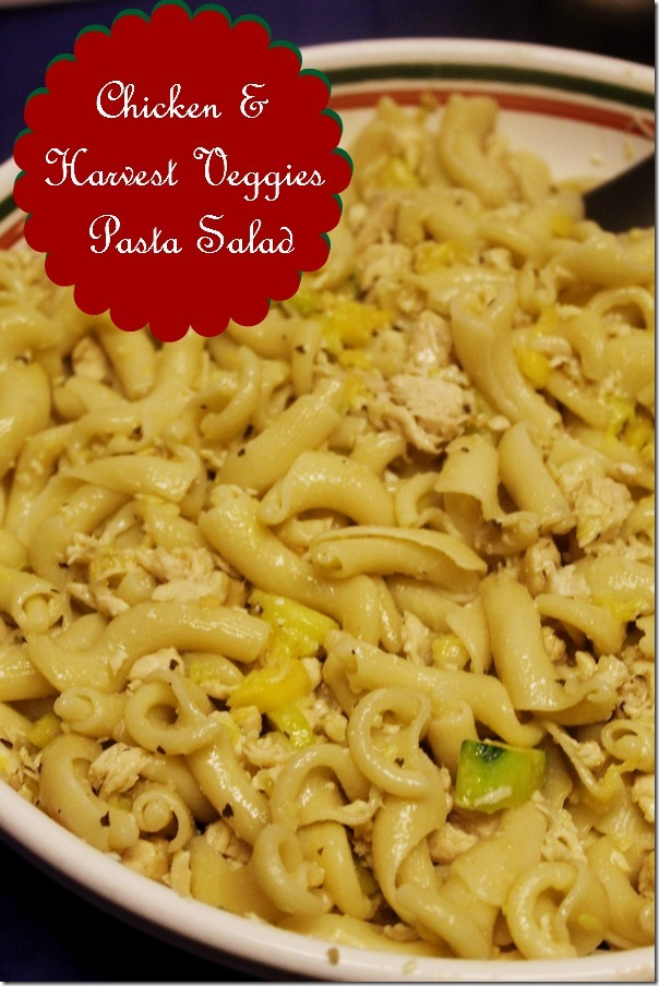 Chicken & Fall Harvest Veggies Hot Pasta Salad Recipe #PastaFits