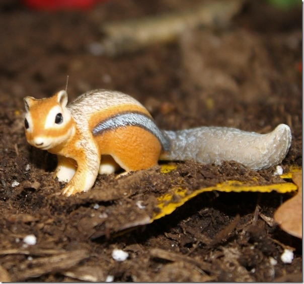 Learning Through Play with Schleich Animals: Who Lives in Our Backyard?