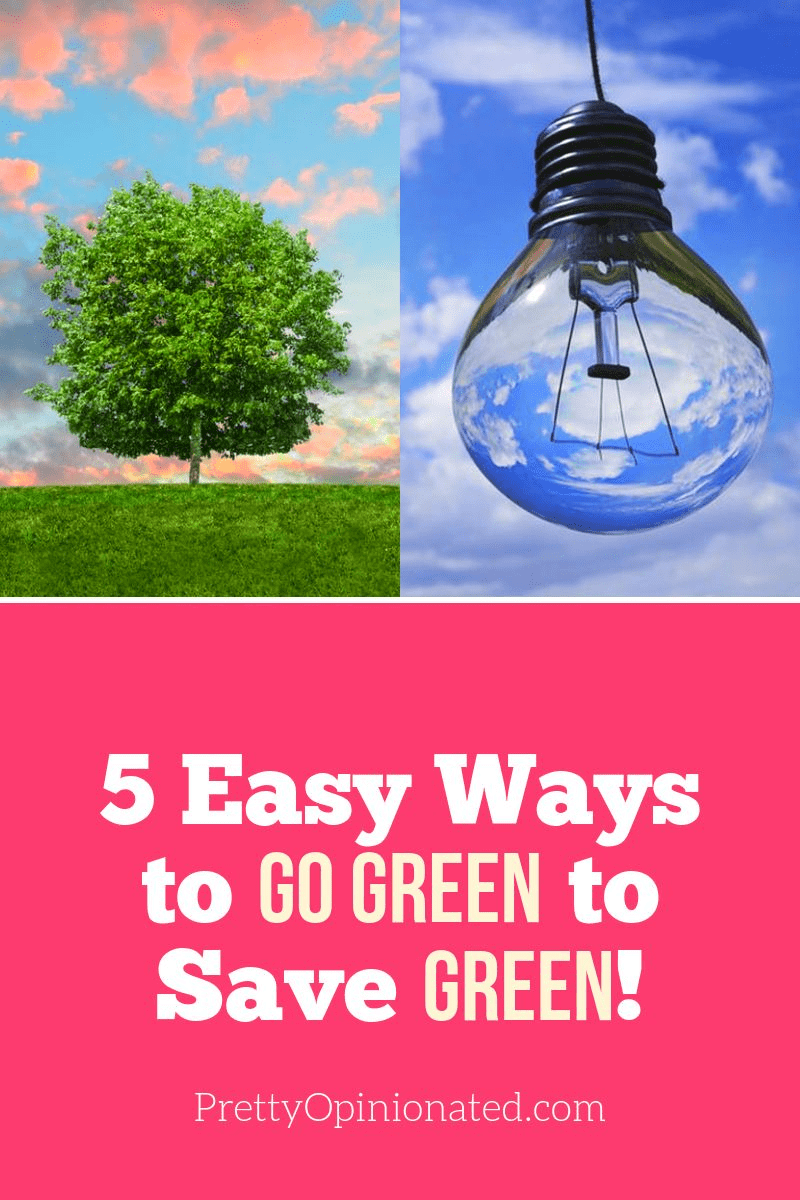 Going green doesn't have to cost a fortune. In fact, there are a few things you can do that will actually save you money in the long run. Check them out!