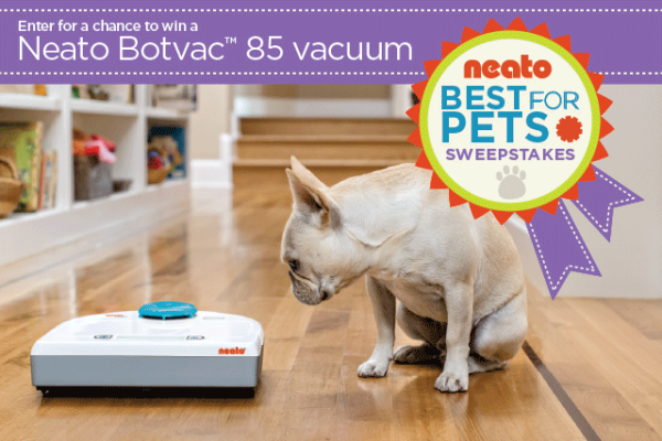 On My Wishlist: The Neato Robotic Vacuum Cleaner