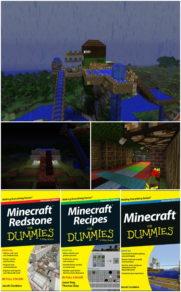 Minecraft for Dummies Review