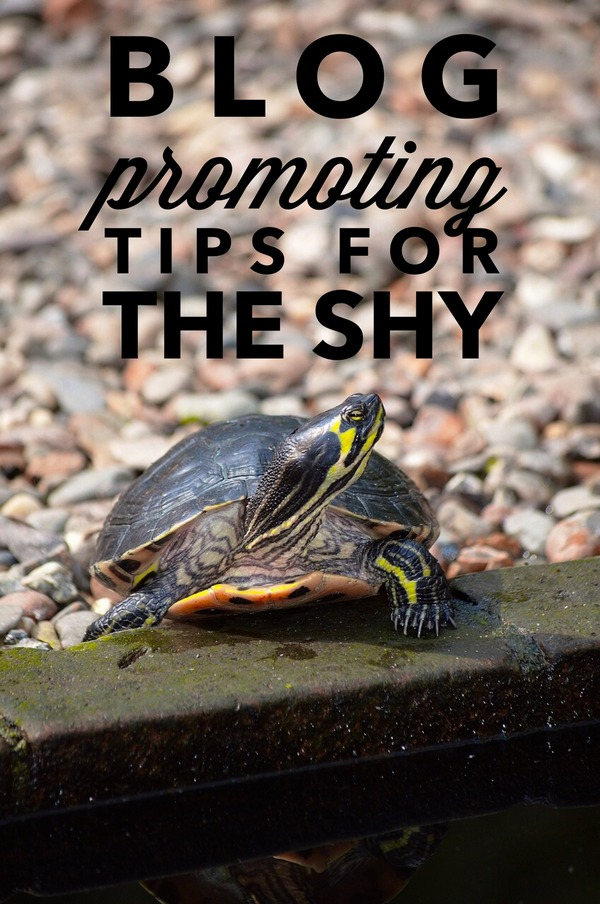 Blog Promoting Shy