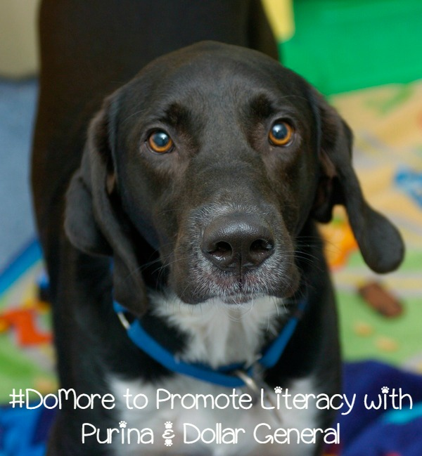 #DoMore With Your Dollar & Improve Literacy with Purina at Dollar General!