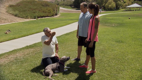 LOS ANGELES, CALIF.: Cesar is on the ground with Nani explaining to Sydney and her father about the dogs behavior. (Photo credit: © National Geographic Channels / )