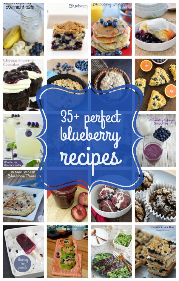 Got a ton of blueberries on hand but don't know what to do with them? Check out these 35+ perfect blueberry recipes that you will be dying to try once you see them!