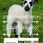 I Kissed the Sheep Goodbye with My Serta Perfect Sleeper #SertaPerfectSleeper