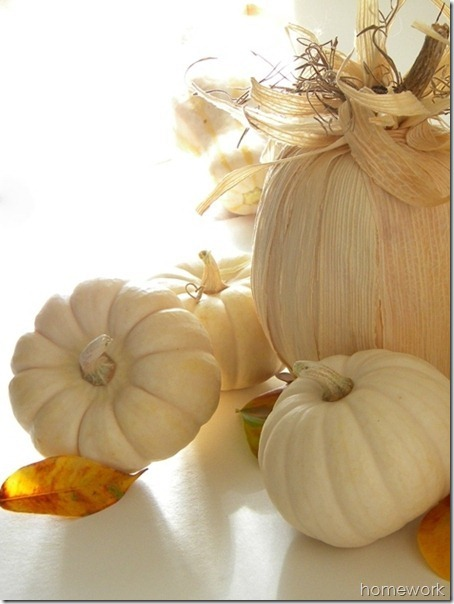 Cornhusk-Pumpkin-6_thumb3