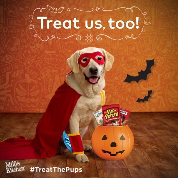 Treat the Pups Howloween