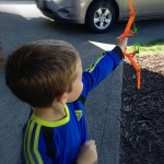 Get Kids Outside and Moving with Firetek Zeon Bow by Zing