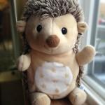 Help Tots Get to Sleep with Cloud B Stay Asleep Buddies Hedgehog Plush