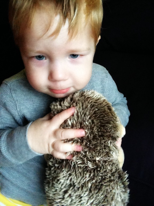 Cloud B's Hedgehog Stay Asleep Buddy is an adorable and cuddly sleep trainer that helps your littlest ones learn to self-soothe at bedtime and stay in bed longer in the morning. Check out our review!