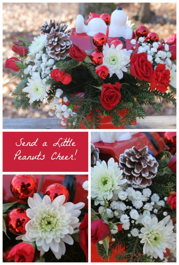 Send your favorite Peanuts fan a little holiday cheer with a Snoopy Cookie Jar arrangement from Teleflora!