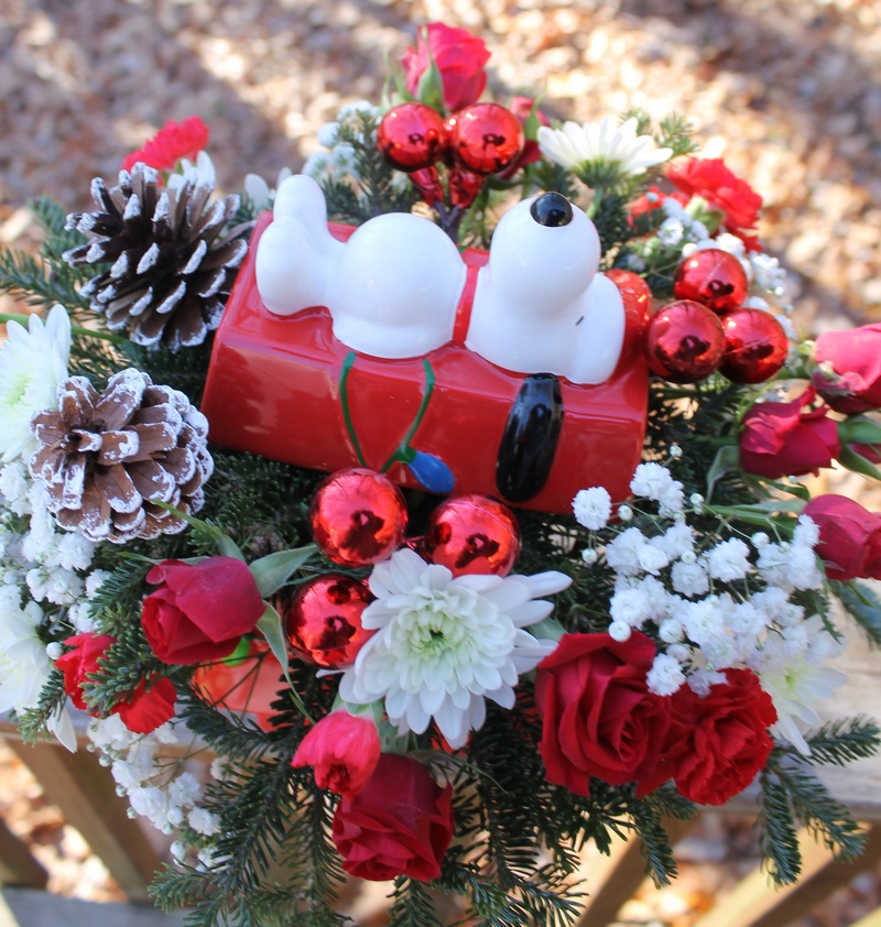 Send a Little Peanuts Holiday Cheer with Teleflora