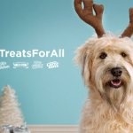 Fun DIY Ideas, Tips & Tools to Include Your Pups in the Holidays