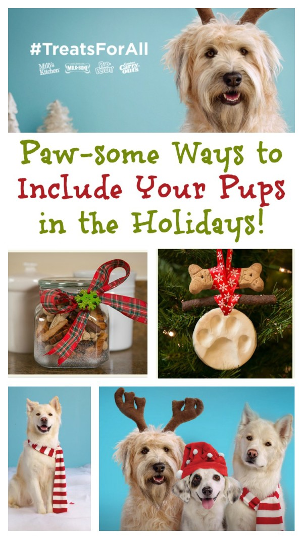 As the holiday countdown continues, today I'm sharing some fun ways to include your dog in the holidays with a few great DIY ideas that your pooch will love! Plus, check out fun survey results about how much we all love our pets during the season!