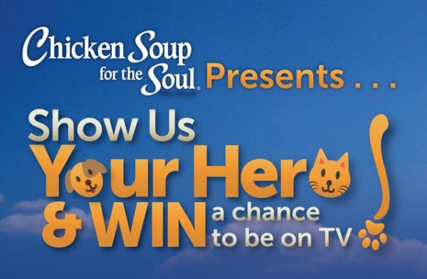 Chicken Soup for the Soul Pet Food presents Show Us Your Hero for a chance to be on TV!